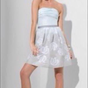 NWT BCBG MaxAzria strapless dress